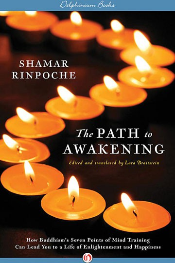 The Path To Awakening – How Buddhism's Seven Points of Mind Training Can Lead You to a Life of Enlightenment and Happiness