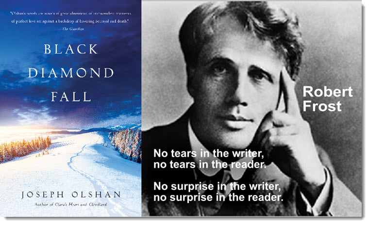 Black Diamond Fall - A Novel by Joseph Olshan